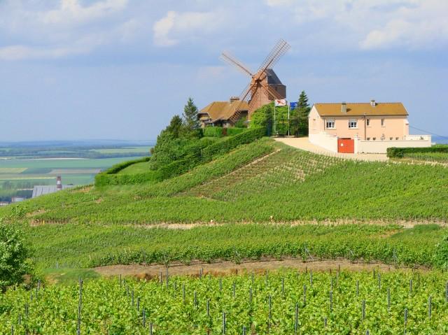 verzenay_moulin-640x479